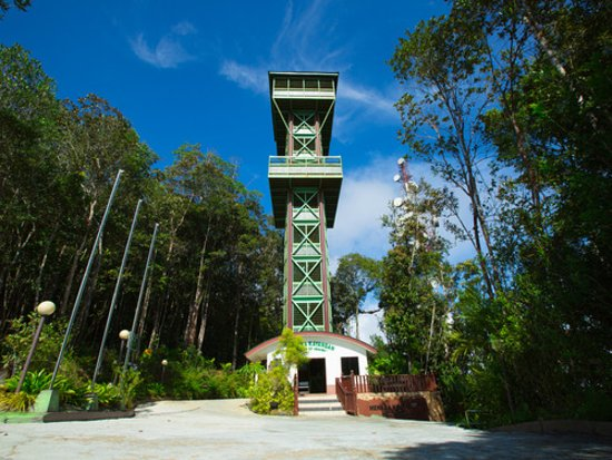 Lahad Datu, Malaysia: Tower of Heaven is a must see if you are visiting the top 10 jungles of the world!