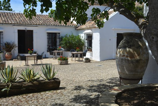 Cortijo El Guarda: The courtyard from just outside the Fig Tree room.