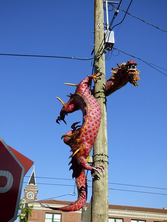 Chinatown International District : dragon