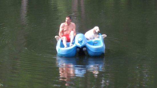 Gerton, NC: Paddling around the spring fed pond