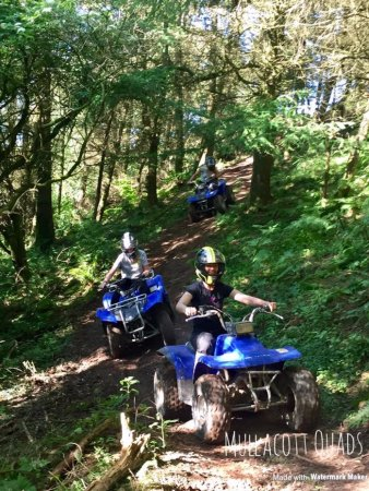 Mullacott Quads, North Devon