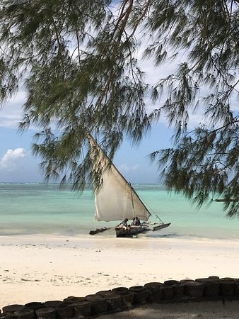 Dream of Zanzibar: photo3.jpg