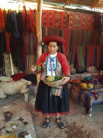 Chinchero, Perú: Planta utilizada para tingimento