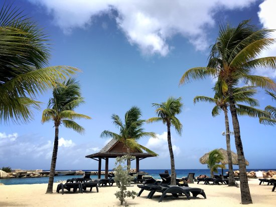 Lions Dive & Beach Resort Curacao: photo4.jpg
