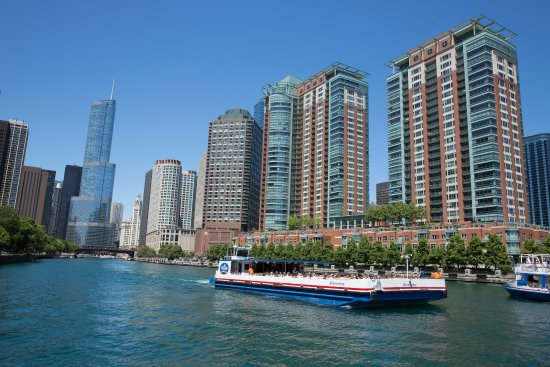 explore all three branches of the chicago river on a shorline