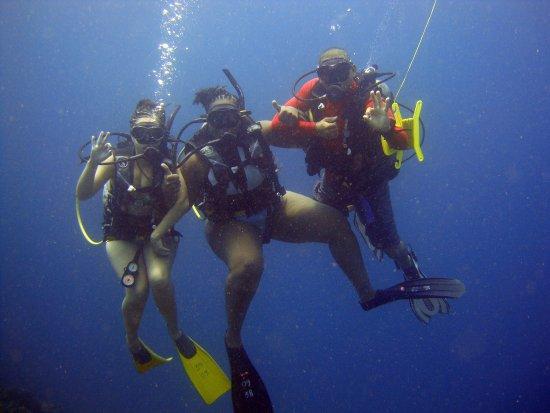 Diving in rosario islands bild von diving planet for Dive planet
