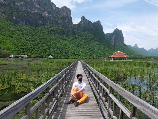 Sam Roi Yot, Thailandia: บึงบัว