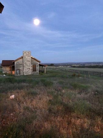 Zion Mountain Ranch : photo1.jpg