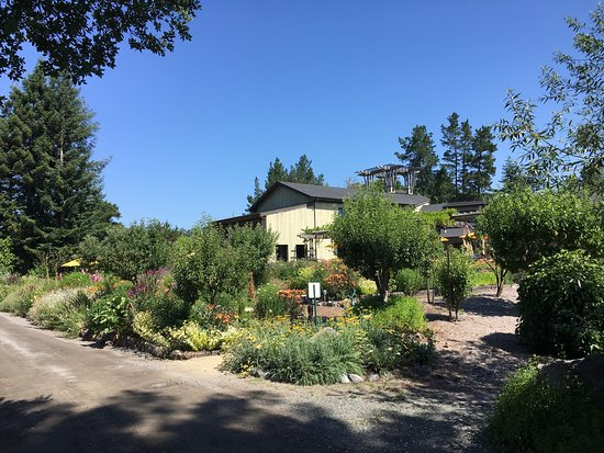 Lynmar Estate Winery : Beautiful winery and estate. Grounds are magnificent!