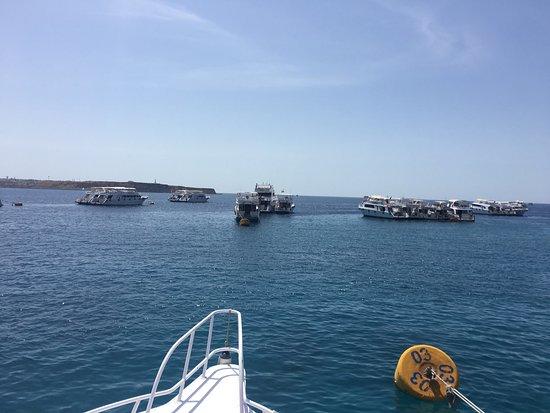 Xperience Sea Breeze Resort: photo5.jpg