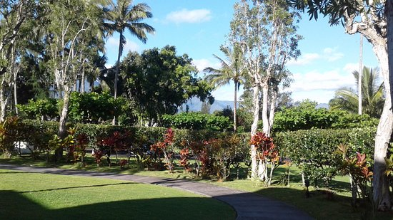 Sealodge at Princeville: Walk way to the unit