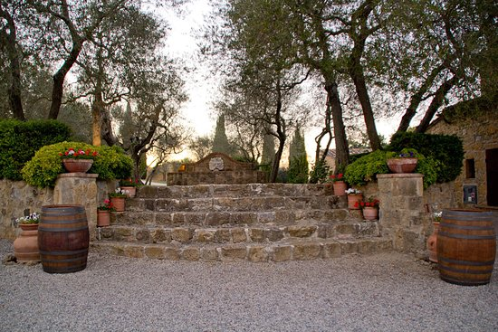Terre di Nano: Stairs leading up to fountain and olive trees