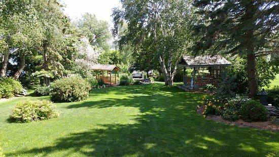 Bloomfield, Canada: Zen backyard