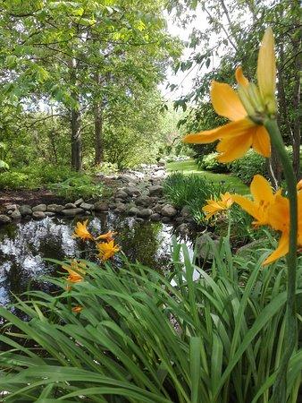 Kumpulan Kasvitieteellinen Puutarha Picture Of Kumpula Botanic