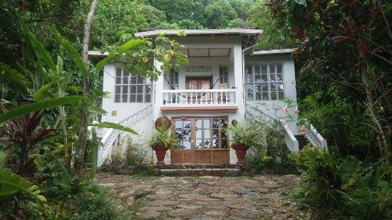 Minca, Kolumbia: Nuestro hostal en el centro de una hermosa selva!