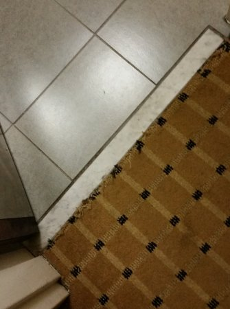 Aiken, Carolina del Sur: Carpet leading to bathroom