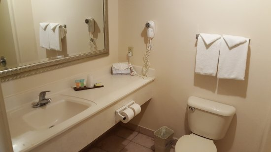 The Inn at South Padre: large enough bathroom with typical items-the only waste basket in the entire room