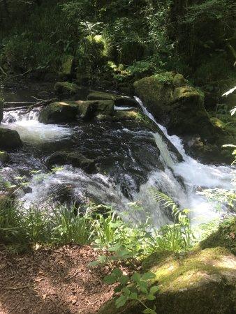 Golitha Falls: photo0.jpg