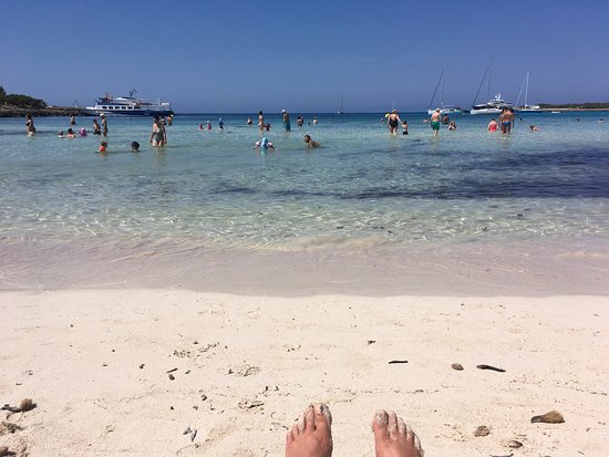 Holiday Village Menorca: photo8.jpg