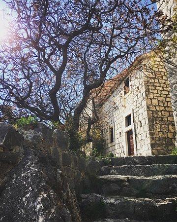 Slatine, Croazia: photo3.jpg