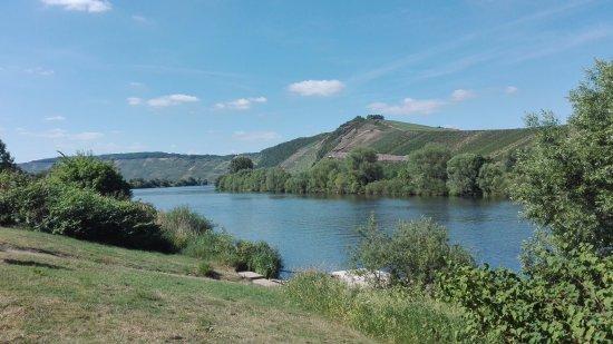 Landal Sonnenberg: Walking down at the river