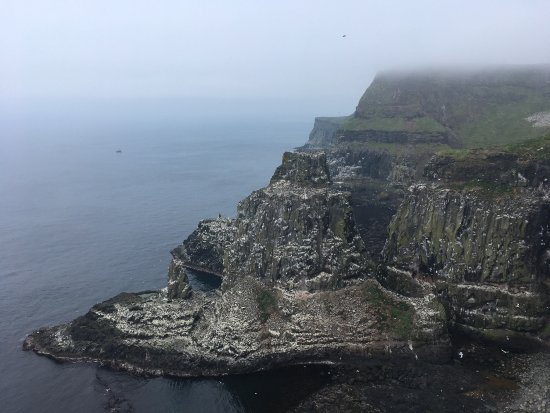 Rathlin Island, UK: photo3.jpg