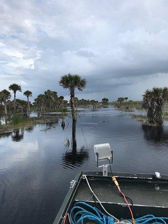 Malabar, FL: photo1.jpg