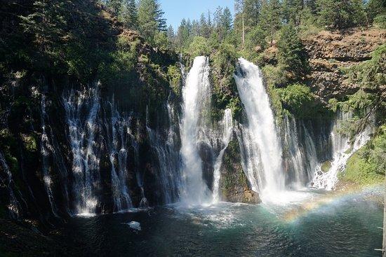 Burney, CA: The falls