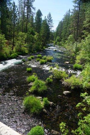 Burney, CA: Stream above falls