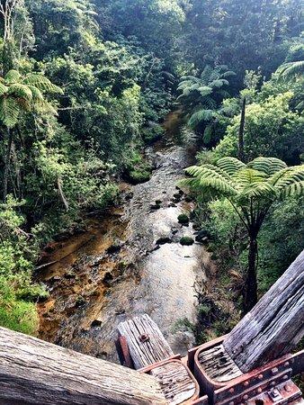 Paihia, Nuova Zelanda: Suspension bridges