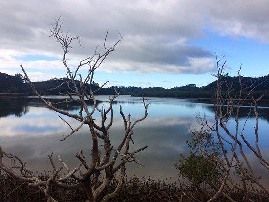Paihia, Nuova Zelanda: Waikare Inlet