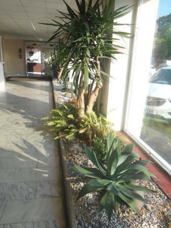 Gillingham, UK: An exotic touch to the hotel entrance.