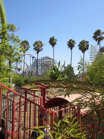 Vallejo, CA: Three of the park's 8 coasters in this picture