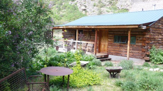 Four Mile Creek Bed and Breakfast: Garden Cabin