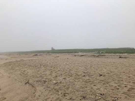 Race Point Beach: photo0.jpg