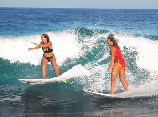 Cabo Surfer
