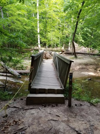 Umstead State Park: bridge