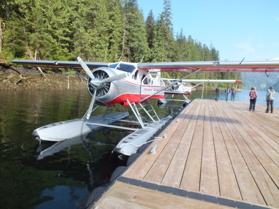 Island Wings Air Service: Our seaplane, after landing on the lake.