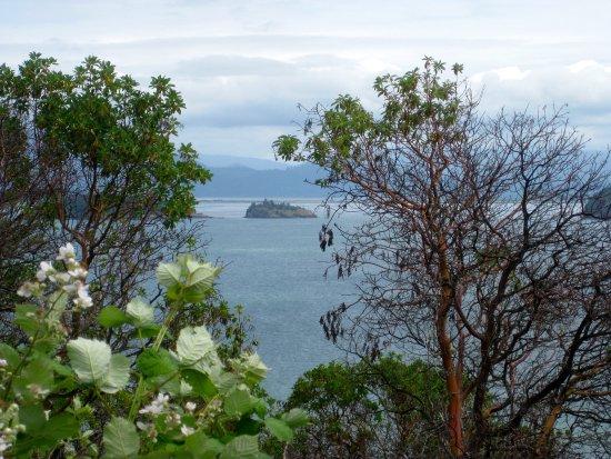 Anacortes, WA: Cap Sante Park overlooking Padilla Bay