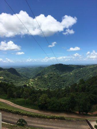 Toro Verde Nature Adventure Park: photo0.jpg