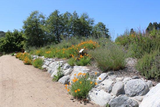 Oak Glen, CA: Gardens near the entrance