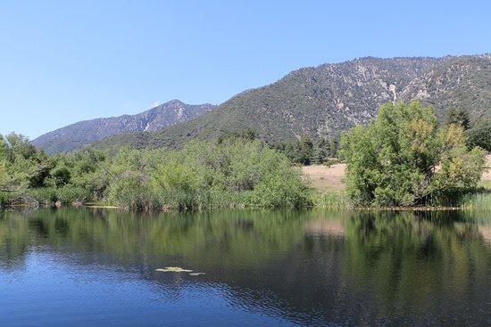 Oak Glen, CA: Pond