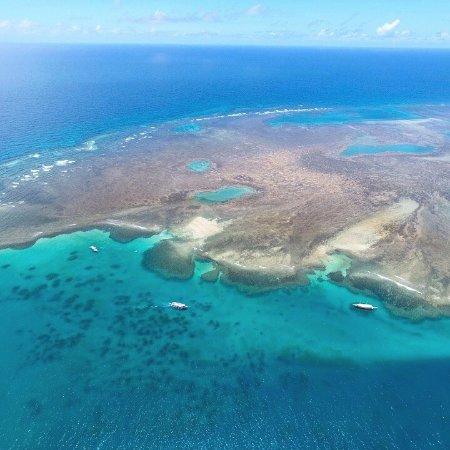 O atributo alt desta imagem está vazio. O nome do arquivo é parque-marinho-do-recife.jpg