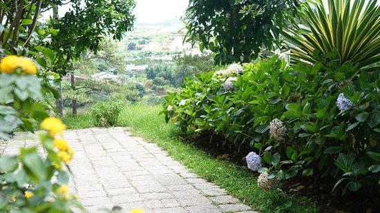 Ana Mandara Villas Dalat Resort & Spa Photo