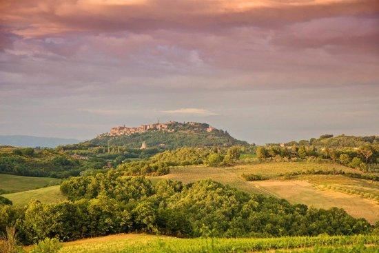 Terre di Nano: View of Montepulciano