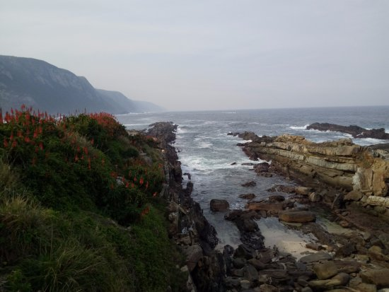 Tsitsikamma National Park, แอฟริกาใต้: Storms River Suspension Bridge (views from along the walk to the bridge)