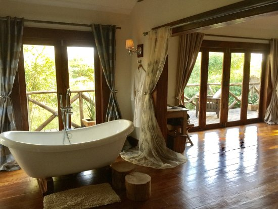 Escarpment Luxury Lodge : View from indoor shower
