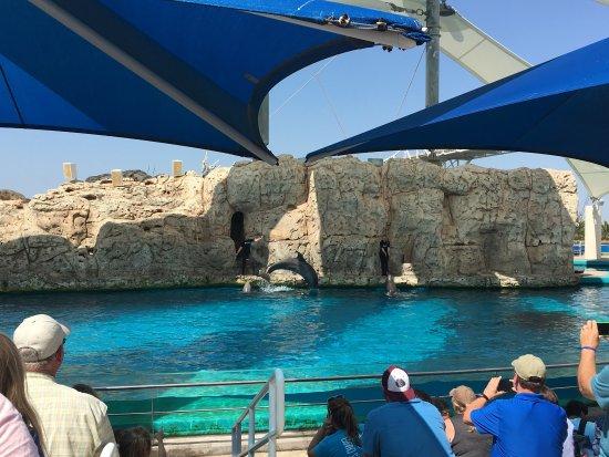 Texas State Aquarium: photo1.jpg