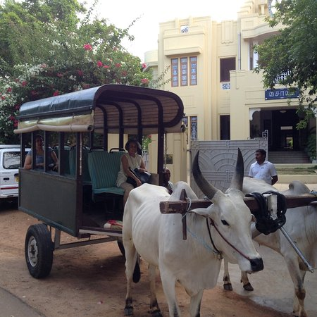 Visalam: The bullock art ride takes off from the hotel in background