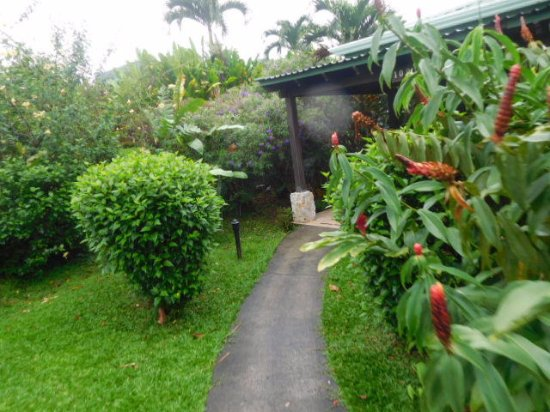 Arenal Manoa Hotel: Like I said the rooms were secluded and romantic!